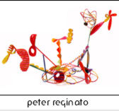 peter reginato home